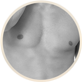 male breast grid | Form & Face